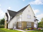 "Thumbnail to rent in ""Lowther"" at Penicuik Road, Roslin"