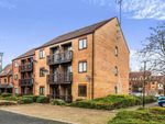Thumbnail to rent in Peter James Court, Stafford, Staffordshire