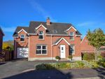 Thumbnail for sale in Greenvale Grove, Antrim