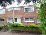 Thumbnail to rent in Essex Road, Huntingdon
