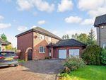 Thumbnail to rent in Rhindmuir View, Baillieston, Glasgow, Lanarkshire