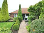 Thumbnail for sale in Grange Road, Elstree, Borehamwood, Hertfordshire