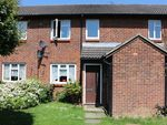 Thumbnail for sale in Taylor Close, Orpington