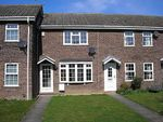 Thumbnail to rent in The Laurels, Hopton