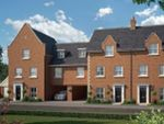 Thumbnail to rent in The Magnus At St James Park, Off Cam Drive, Ely