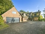 Thumbnail for sale in Leigh Court Close, Cobham, Surrey