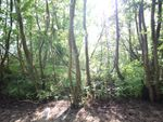 Thumbnail for sale in Woodlands Estate, Horning, Norwich