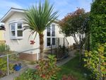 Thumbnail for sale in Wareham Road, Holton Heath, Poole