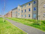 Thumbnail to rent in Delphinium Court, Eynesbury, St. Neots