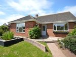 Thumbnail for sale in Sweetbrier Lane, Exeter