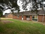 Thumbnail to rent in The Pines, Holywell Row, Bury St. Edmunds