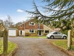 Thumbnail for sale in Dockenfield, Farnham, Surrey