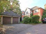 Thumbnail to rent in Childsbridge Lane, Seal, Sevenoaks