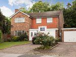 Thumbnail to rent in Bonar Place, Chislehurst