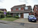 Thumbnail to rent in Grantham Crescent, Ipswich