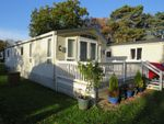 Thumbnail to rent in Chapel Road, Carlton Colville, Lowestoft