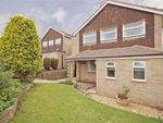 Thumbnail to rent in Mill Close, Harrogate, North Yorkshire