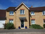 Thumbnail to rent in Braganza Way, Beaulieu Park, Springfield, Chelmsford