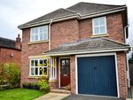 Thumbnail to rent in Holly Drive, Market Drayton