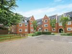 Thumbnail to rent in Tanbridge Park, Horsham