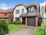 Thumbnail for sale in Padgate, Thorpe End, Norwich