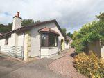 Thumbnail to rent in Greenview Pitkerrald Road, Drumnadrochit, Inverness