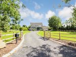 Thumbnail to rent in Lough Road, Ballinderry Upper, Lisburn