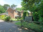 Thumbnail for sale in Pinewood Lodge, The Rutts, Bushey Heath, Bushey