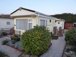 Thumbnail for sale in Blue Sky Close, Bradwell, Great Yarmouth, Norfolk