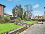 Thumbnail for sale in Westdeane Court, Basingstoke