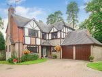 Thumbnail for sale in Burston Gardens, East Grinstead, West Sussex