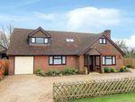 Thumbnail for sale in Canterbury Road, Brabourne, Ashford, Kent