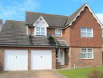Thumbnail for sale in Cornflower Way, Southwater, Horsham