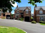 Thumbnail for sale in Tullynagardy Brae, Newtownards
