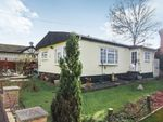 Thumbnail to rent in Bushey Hall Park, Bushey Hall Drive, Bushey