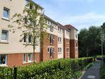Thumbnail to rent in Queripel Close, Tunbridge Wells