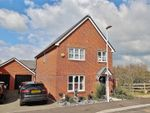 Thumbnail for sale in Bellflower Drive, Worthing, West Sussex