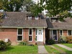 Thumbnail to rent in Batchelors, Pembury, Tunbridge Wells