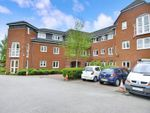 Thumbnail for sale in Mallard Court, Chester