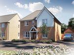 "Thumbnail to rent in ""The Berrington"" at Oak Tree Road, Hugglescote, Coalville"