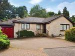 Thumbnail to rent in Grierson Drive, Deanston, Doune