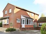 Thumbnail for sale in Mallard Close, Bishops Waltham, Southampton