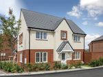 "Thumbnail to rent in ""Morpeth"" at Robell Way, Storrington, Pulborough"