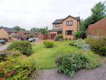 Thumbnail for sale in Macneill Gardens, Stewartfield, East Kilbride