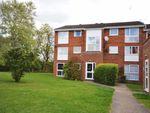 Thumbnail to rent in Nightingale Walk, Hemel Hempstead