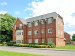 Thumbnail to rent in Pater Court, Portland Way, Knowle, Fareham, Hampshire
