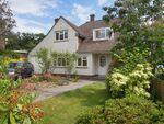 Thumbnail to rent in Bassett Green Close, Bassett Southampton