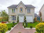 """Thumbnail to rent in """"Corgarff"""" at Drumpellier Avenue, Coatbridge"""
