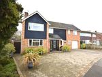 Thumbnail for sale in Meadway, Halstead, Essex