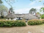 Thumbnail for sale in Besford Court Estate, Besford, Worcester, Worcestershire